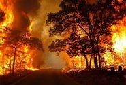 ۲ عامل آتش سوزی جنگل های ارسباران زندانی هستند