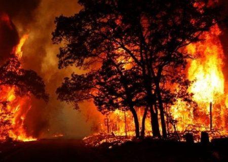 سامانه ۱۵۰۴ آماده دریافت گزارش آتشسوزی در منابع طبیعی آذربایجانغربی